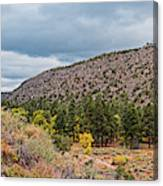 Panorama Of Cliff Dwelling And Fall Cottonwoods In Frijoles Canyon - Bandelier National Monument  Canvas Print