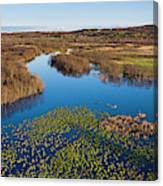 Panorama Of Mouth Of Betsie River Canvas Print