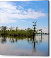 Pasquotank River North Carolina Canvas Print