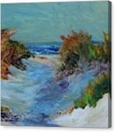 Path To The Ocean Canvas Print