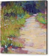 Peaceful Journey Canvas Print