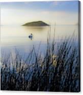 Pelican On Klamath Lake Canvas Print