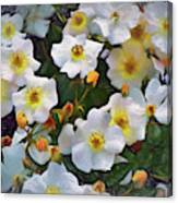 Petal Pushers Canvas Print