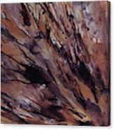 Petrified Wood Canvas Print