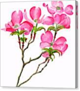 Pink Dogwood Vertical Design Canvas Print