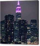 Pink Empire State Building Canvas Print