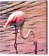 Pink Flamingo Two Canvas Print