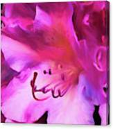 Pink O'keefe Canvas Print