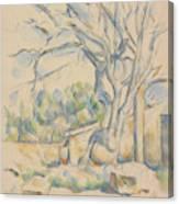 Pistachio Tree At Chateau Noir Canvas Print