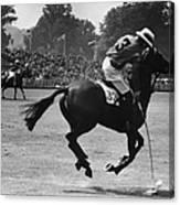 Polo Pony Canvas Print
