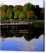Pond Refletions Canvas Print