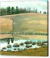 Pond Spiders Canvas Print