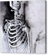 Portrait Of A Skeleton Canvas Print