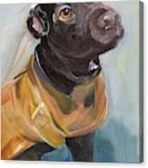 Pretty Girl In Carhartt  Canvas Print
