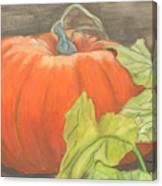 Pumpkin In Patch Canvas Print