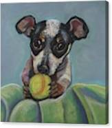 Puppy With Tennis Ball Canvas Print