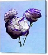 Purple And White Lisianthus Canvas Print