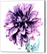 Purple Blend Petals Two Canvas Print