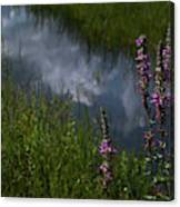 Purple Daydream Canvas Print