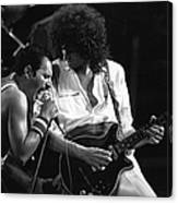Queen Concert Canvas Print