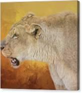 Queen Of The Desert Canvas Print