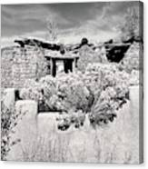 Rabbitbrush And Adobe Ruins In Sepia Canvas Print