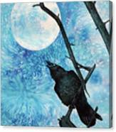 Raven with Torrey Pine Branch and Cold Moon Canvas Print