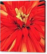 Red Bliss Canvas Print