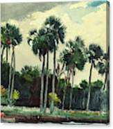 Red Shrt, Homosassa, Florida Canvas Print