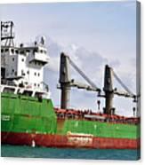Redhead Freighter Canvas Print