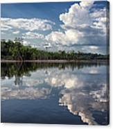 Reflections In Amazon River Canvas Print