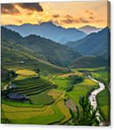 Rice Field On Terraces Panoramic Canvas Print