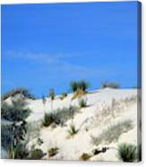 Rippled Sand Dunes In White Sands National Monument, New Mexico - Newm500 00106 Canvas Print