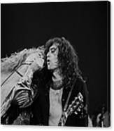 Robert Plant And Jimmy Page Canvas Print