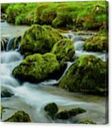 Rock Fall Canvas Print