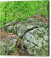 Rock On Green's Hill Canvas Print