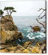 Rocky Cliff And Trees In Carmel Near Canvas Print