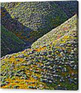 Rolling Hillsides In California - Vertical Canvas Print