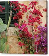 Rustic Life - Flowers Canvas Print