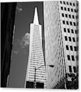 San Francisco - Transamerica Pyramid Bw Canvas Print