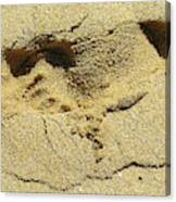 Sand Between Your Toes Canvas Print