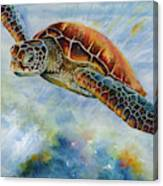 Save The Turtles Canvas Print
