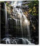 Scaleber Force Canvas Print