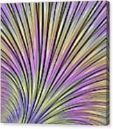 Scallop Canvas Print