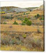 September's Golden Treasure Canvas Print