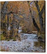 Serene Stream In Autumn Canvas Print