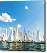 Several Sailboats Canvas Print