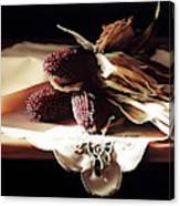 Raspberry Corn Canvas Print