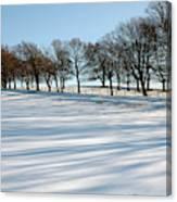 Shadows In The Snow Canvas Print