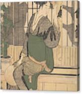 Shadows On The Shoji Canvas Print